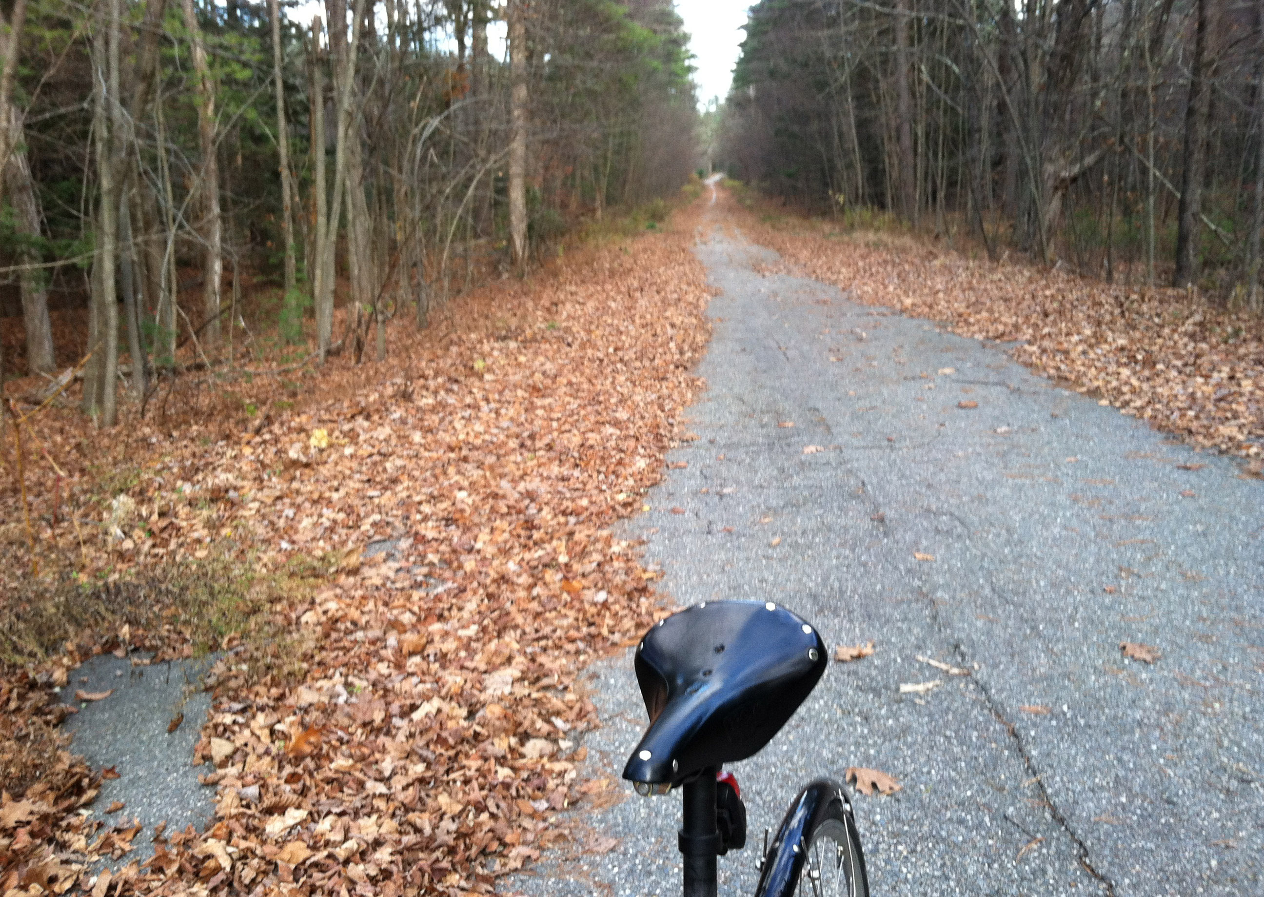 Folding bike adventure in November