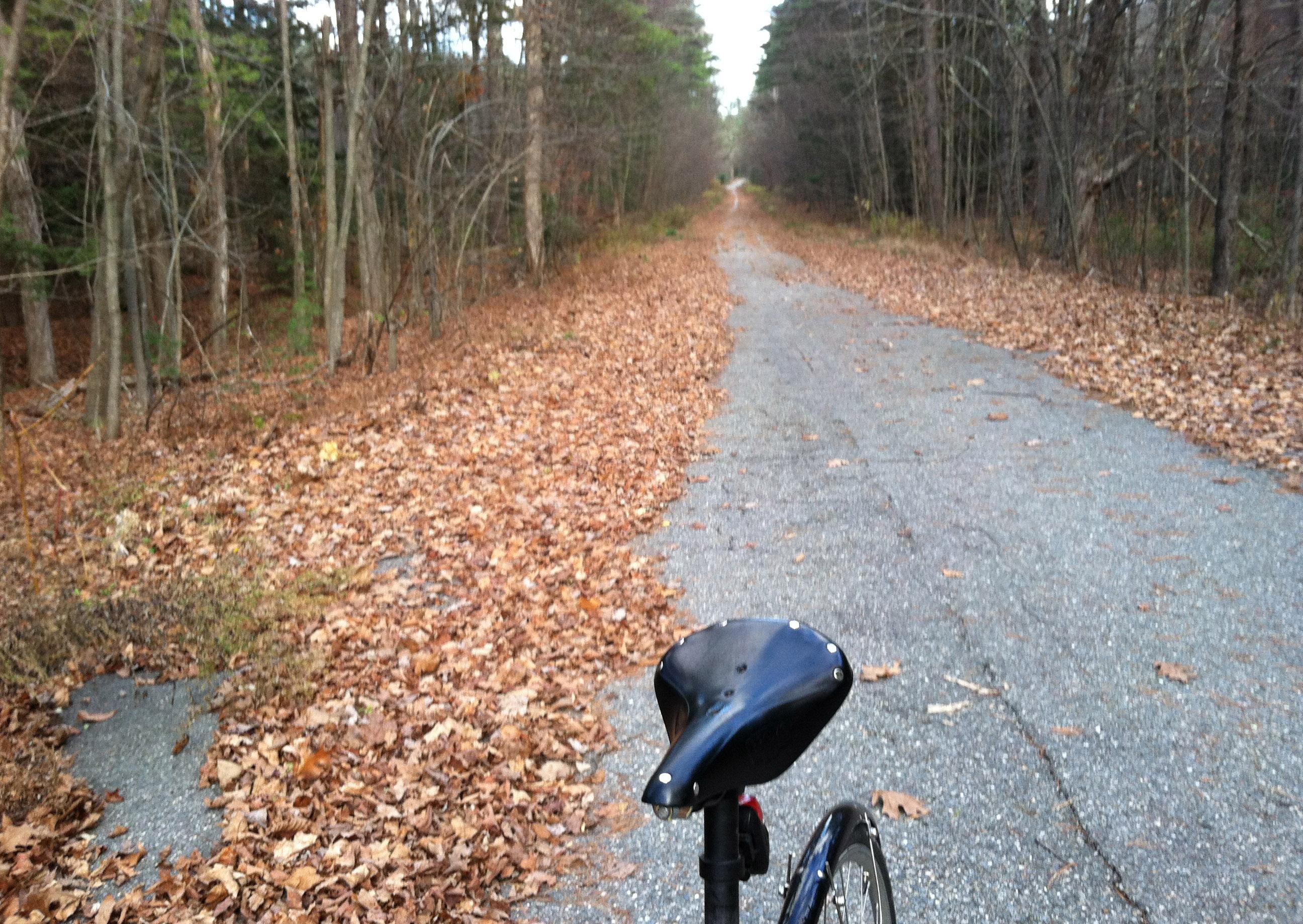Folding bike adventure in November