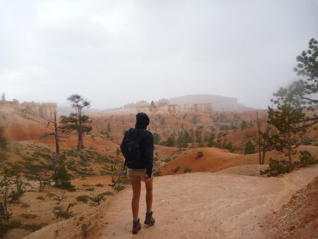 Mire national park