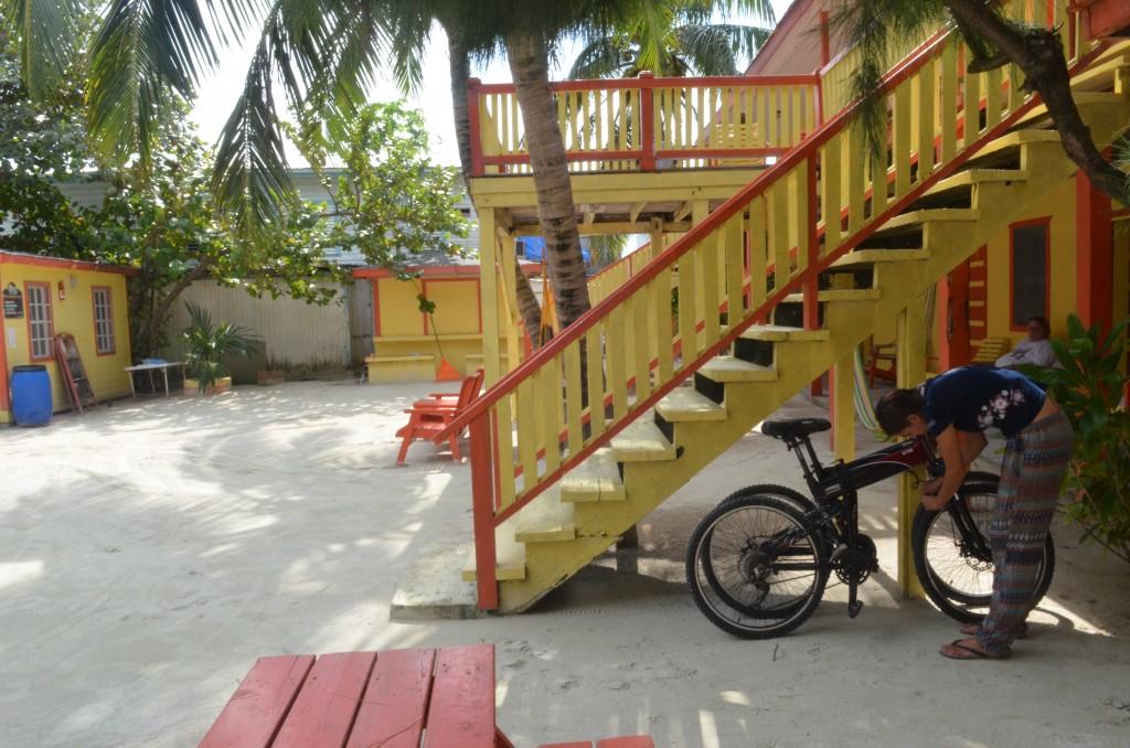 Hostel bikes