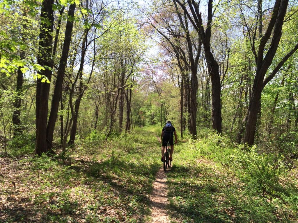 Montague Folding Mountain Bike on Light Trail