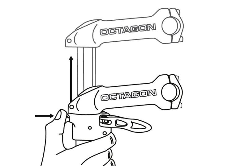 octagon-stem-raising