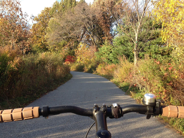 Connys-bike-on-the-path